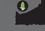 RENEW MEDISPA Logo